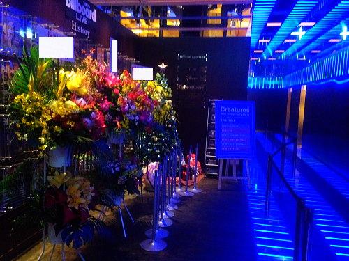 BillboardLiveにスタンドお祝い花