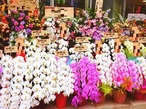 スタンド花と胡蝶蘭
