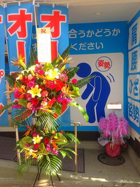 整骨院の開院祝いにおすすめの花