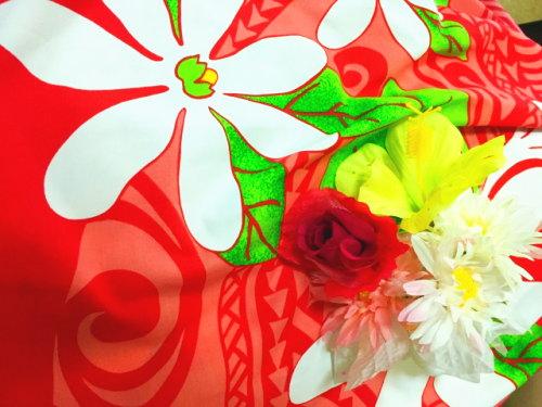 フラの花イメージ