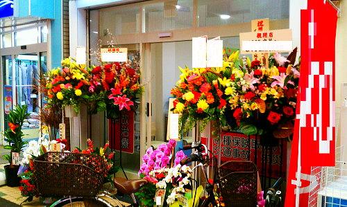 接骨院の開業祝い花