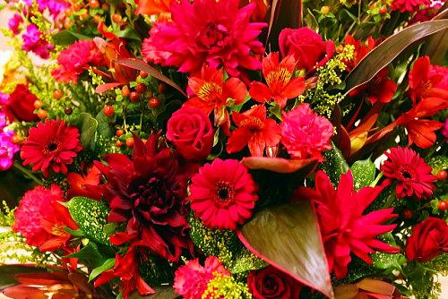 開店祝い赤い花タブー
