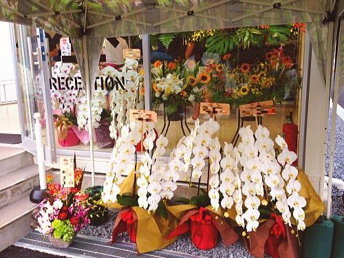 入口を華やかに飾る花